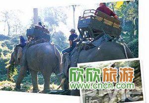 去旅行人物血拼秘笈分开旅游还是_北京冒险攻攻略男女不别行黑化图片